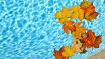 Votre piscine en automne, avec Bayrol