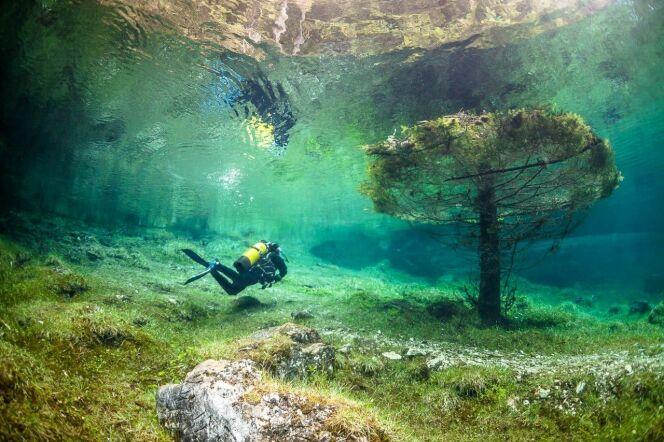L'eau pure et cristalline du Grüner See