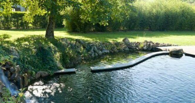 """L'écosystème de votre piscine naturelle<span class=""""normal italic petit"""">© Patrick Lemaire Paysage</span>"""