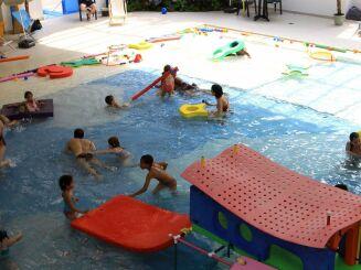 L'activité jardin aquatique à Torcy