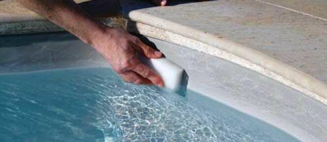"""La brosse de ligne d'eau pour piscine<span class=""""normal italic petit"""">DR</span>"""