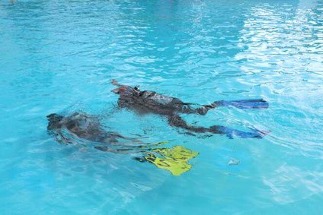 La formation de plongée