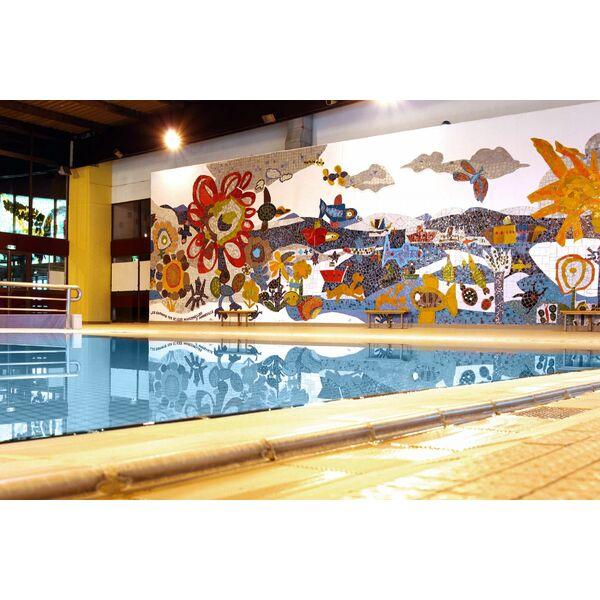 Piscine olympique d 39 amn ville horaires tarifs et photos - Horaires piscine amneville ...