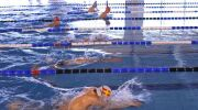 La méthode everybodyswim en natation