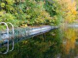 La piscine biologique : une piscine 100% naturelle