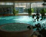 Salle de sport avec piscine & Spa La Cour de Honau à la Wantzenau