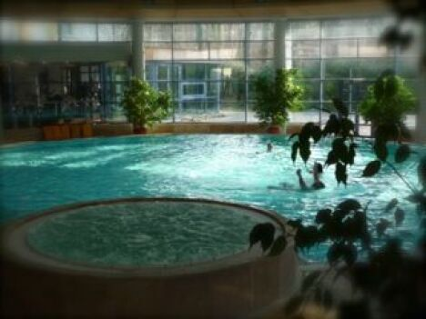 """La piscine de La Cour de Honau permet de nager dans une eau chauffée à 30°<span class=""""normal italic petit"""">DR</span>"""