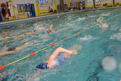 """La piscine du Viguier à Carcassonne est principalement réservée aux scolaires et associations<span class=""""normal italic petit"""">© Service Communication -Ville de Carcassonne</span>"""