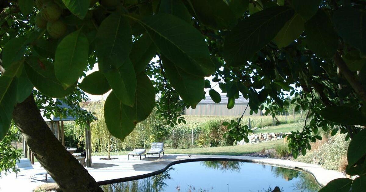 dossier la piscine naturelle et bio pour une baignade cologique. Black Bedroom Furniture Sets. Home Design Ideas