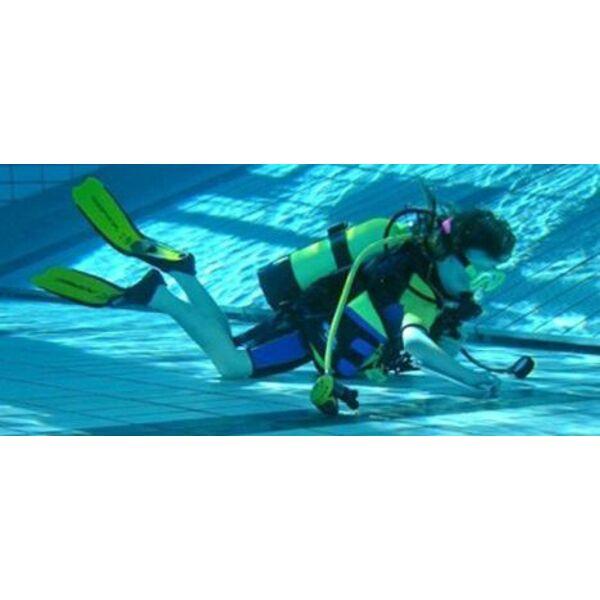 La plong e en piscine pour s 39 entrainer la plong e sous for Apprendre a plonger dans la piscine