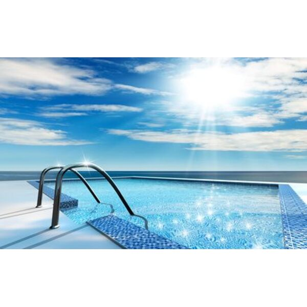 la rampe de piscine pour un acc s facile au bassin. Black Bedroom Furniture Sets. Home Design Ideas
