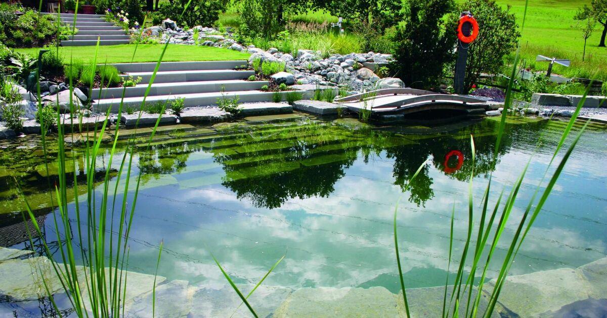 piscine zone naturelle