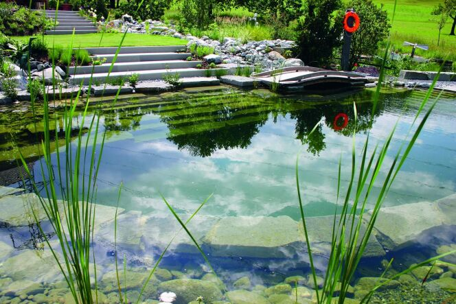 """La zone de régénération ou d'oxygénation de votre piscine naturelle est une zone essentielle.<span class=""""normal italic petit"""">© BIOTOP - www.baignade-ecologique.com</span>"""