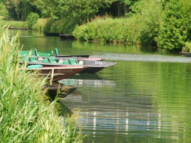 Laissez-vous charmer par le Marais Poitevin durant votre cure thermale en Poitou-Charentes
