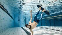 Découvrez les photos sous-marines de Laurent Farges