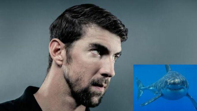 "Le champion olympique de natation affrontera un grand requin blanc.<span class=""normal italic petit"">DR</span>"