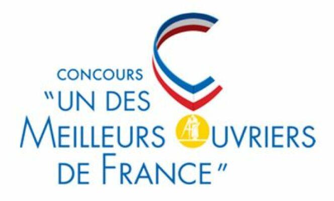 Le concours de meilleur ouvrier de France possède une catégorie destinée aux professionnels de la piscine.