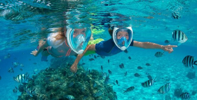 """Le masque intégral Easybreath permet de respirer naturellement sous l'eau tout en offrant une vision parfaite.<span class=""""normal italic petit"""">DR</span>"""