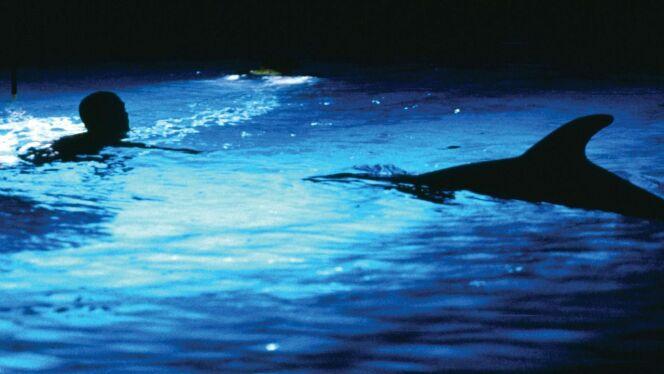 """Le plongeur Enrico Maiorca, a inspiré le film du """"Grand Bleu"""".<span class=""""normal italic petit"""">DR</span>"""