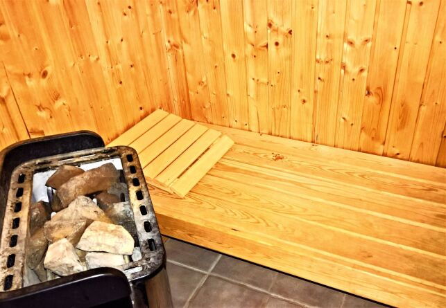 Le poêle de sauna : choix et prix