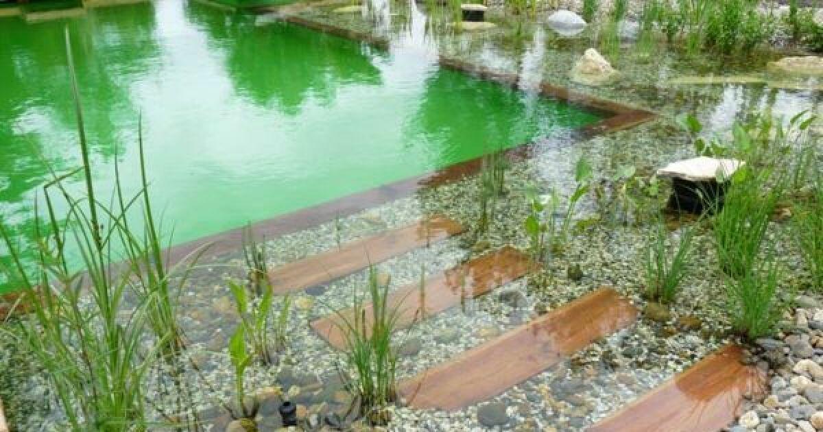 Prix et tarifs d 39 une piscine naturelle biologique - Prix d une piscine naturelle ...
