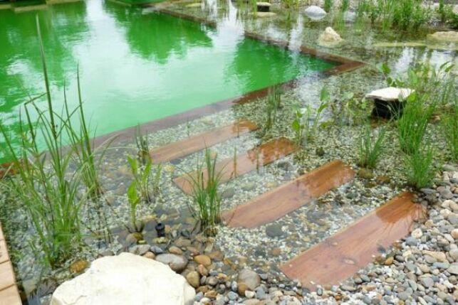 Le prix d'une piscine naturelle/biologique