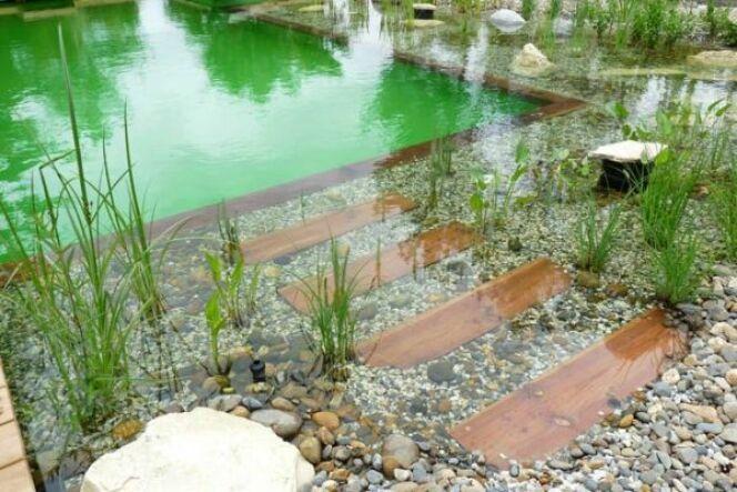 Prix et tarifs d 39 une piscine naturelle biologique for Construire sa piscine naturelle