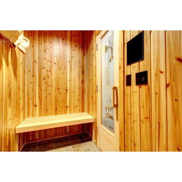 le sauna au gaz. Black Bedroom Furniture Sets. Home Design Ideas