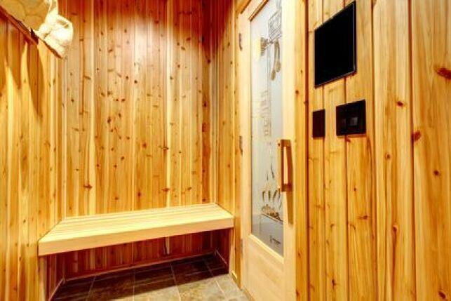 Le sauna au gaz