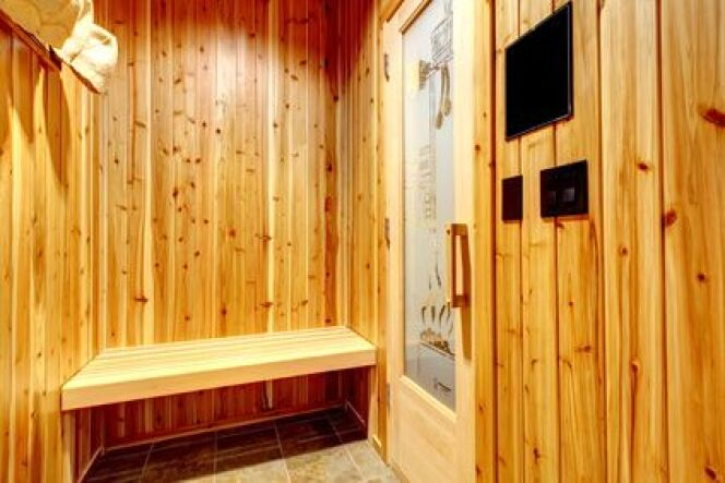 le sauna au gaz. Black Bedroom Furniture Sets. Home Design Ideas