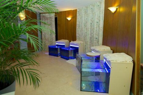 "Le Sweety Fish Spa à Quimper possède plusieurs bassins de fish pedicure.<span class=""normal italic petit"">© Thierry Becouarn</span>"