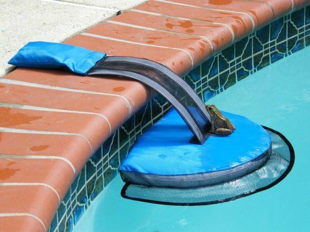 Le système Frog Log permet aux animaux de sortir de la piscine.© Rich Mason - Frog Log