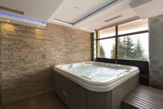 """Le traitement de votre spa <span class=""""normal italic petit"""">© rilueda - Fotolia.com</span>"""