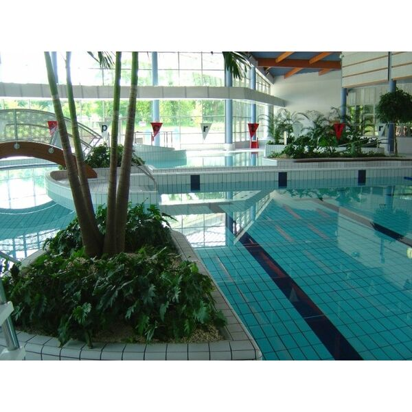 Centre aquatique aqualis piscine gouvieux horaires for Piscine chambly