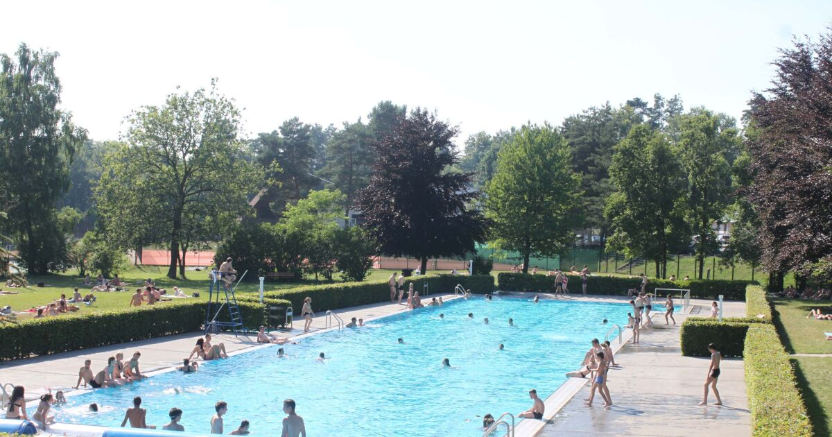 Piscine les pins haguenau horaires tarifs et t l phone for Piscine de grand champ