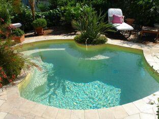 Les 10 plantes à planter autour de sa piscine