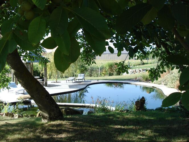 """Vue sur une piscine naturelle Patrick Lemaire Paysage<span class=""""normal italic petit"""">© Patrick Lemaire Paysage</span>"""