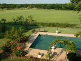 Arbres et pelouse autour de la piscine