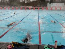 Zoom sur la natation de haut niveau
