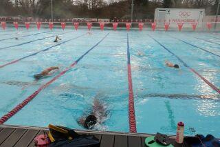 La natation de haut niveau, avec les explications de Lionel Horter