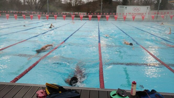 Les jeunes nageurs de haut-niveau durant leur séance d'entraînement au Mulhouse Olympic Natation, en Janvier 2017.