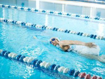 Les lignes de nage en piscine municipale