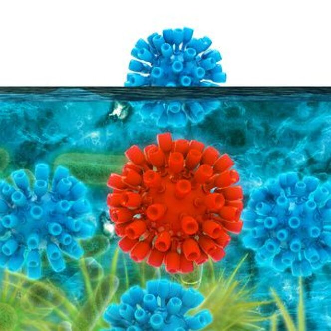 """Pour éliminer les bactéries, prenez une douche savonnée et passez par le pédiluve avant d'aller dans l'eau<span class=""""normal italic petit"""">© fotoliaxrender - Fotolia.com</span>"""