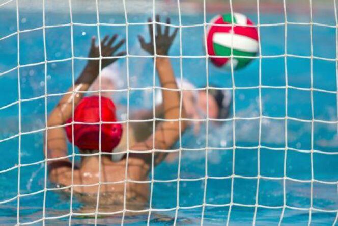 """Les règles du water-polo<span class=""""normal italic petit"""">© kisgorcs</span>"""