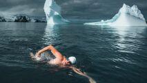 Il nage dans les eaux glaciales de l'Antarctique