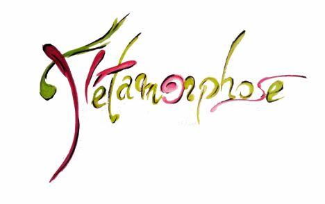 "Métamorphose-piscine-jardin-paysagiste-piscinier-toulouse<span class=""normal italic petit"">DR</span>"