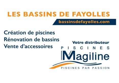 Les Bassins De Fayolles à Savigné