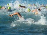 Nage en mer : comment prendre la vague ?