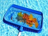 Ma piscine en automne
