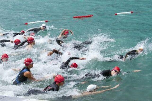 Marathon de natation